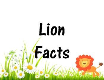 Lion Facts + Lion Project