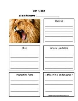 Lion Fill in the Blank One page Animal Report