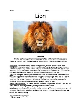 Lion - Informational Article Facts Questions Vocabulary Review
