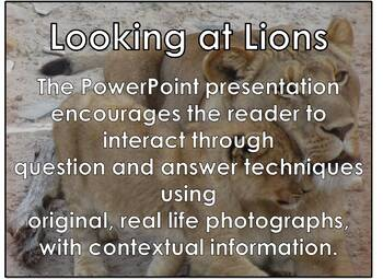 Lions - Interactive PowerPoint presentation