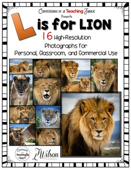 Lion Photographs for Classroom and Commercial Use