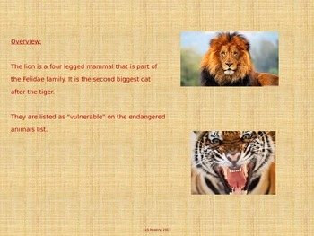 Lion - Power Point - Information Pictures Facts