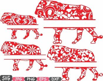 Lion Split Jungle Animal Safari Flower SVG school Clipart zoo abc  -400s