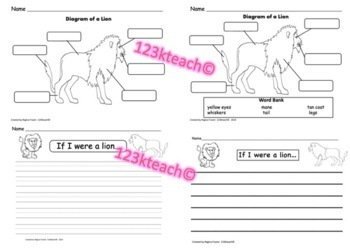 All about lions writing prompts graphic organizers diagram by all about lions writing prompts graphic organizers diagram ccuart Image collections