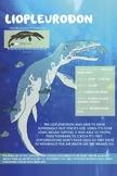 Liopleurodon - Dinosaur Poster & Handout