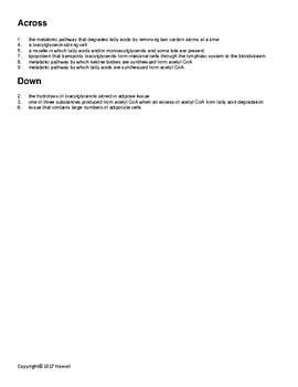 Lipid Metabolism Vocabulary Crossword for Biological Chemistry