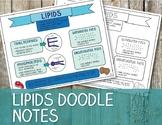 Lipids Doodle Notes