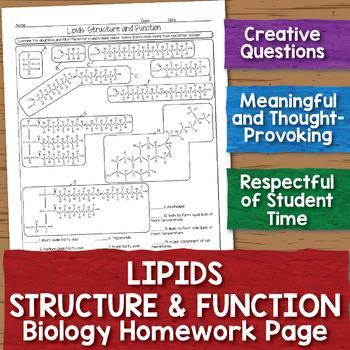 Lipids Structure and Function Homework Worksheet
