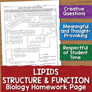 Lipids Structure And Function Homework Worksheet By Science With Mrs Lau