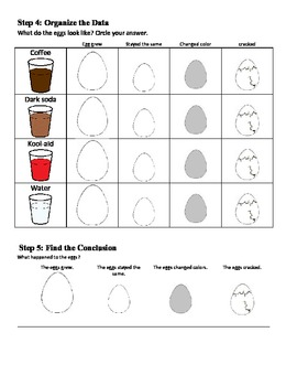 Liquid Soaking Eggs experiment and data sheets