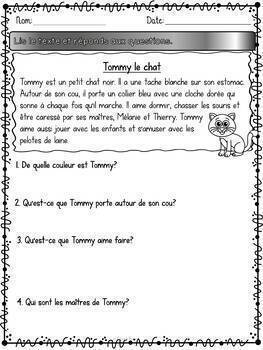 Lis et réponds - Textes et questions - French Simple Readers