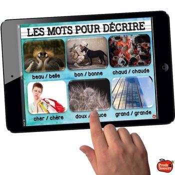 DICTIONNAIRE DE MOTS FRÉQUENTS / French Sight words