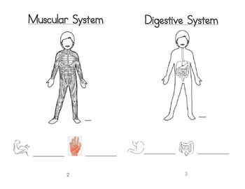 Listening and Learning Grade 1 Domain 2 Body Systems Booklet