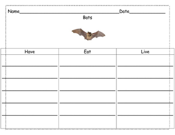Literacy Bat Unit- Stellaluna
