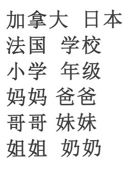 Literacy- Better Chinese Vol. 1 Sorting Game