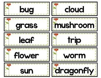 Literacy Centers- AUGUST