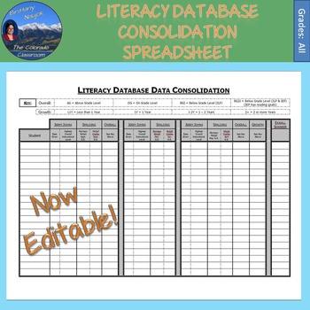 Literacy Database Consolidation Spreadsheet