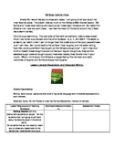 Literacy Lesson : Visualization and Paragraph Writing