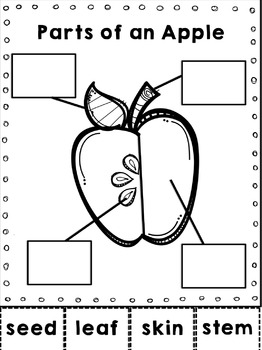 Literacy & Math Centers APPLES