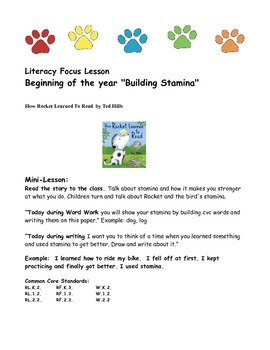Literacy Mini-Lessons