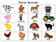 Literacy Word Cards