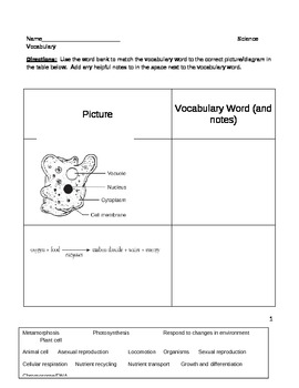 Middle School Biology Science Worksheet - Life Processes Vocabular Worksheet