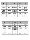 Literary Analysis Bingo