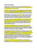 Literary Analysis Essay Example w/Annotations