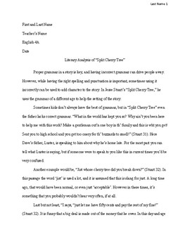 Literary Analysis MLA Student Example