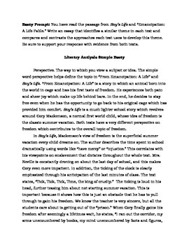 two literary analysis sample essays parcc 6 8 by english in the middle - Example Of Literature Essay