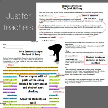 Literary Analysis: The Quick Lit Essay with Differentiated Supports