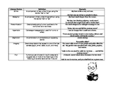 Literary Devices Examples Handout