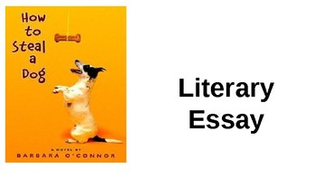 Literary Essay Connected To How To Steal a Dog by Barbara O'Connor