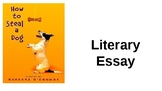 Literary Essay Connected To How To Steal a Dog by Barbara