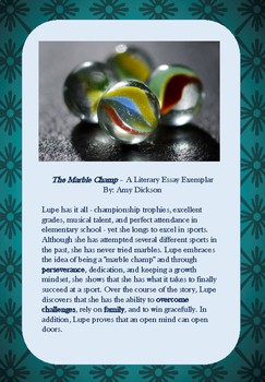 Literary Essay Exemplar - The Marble Champ