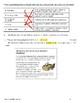 Literary Genre - Quiz/Assessment