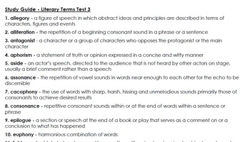 Literary Terms Test 3