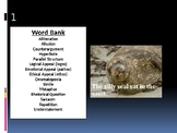 Literary and Rhetorical Devices Review Game PowerPoint