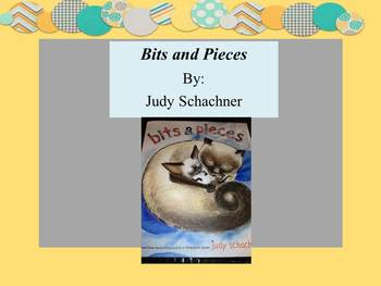 Literature Activities and Questions for Bits and Pieces by Judy Schachner