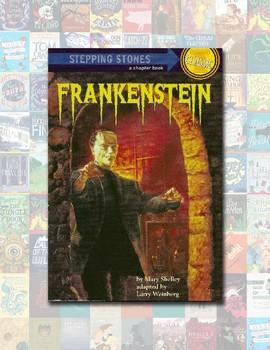 Literature Book Quiz/Test – Frankenstein