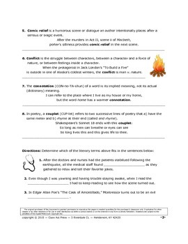 Literature, Vocabulary Activities: Literary Terms Starting with C (5 p., $3)