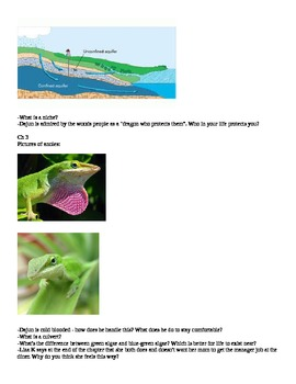 Literature Study on The Missing 'Gator of Gumbo Limbo ECOLOGY ENVIRONMENT