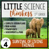 Little 1st Grade SCIENCE Thinkers {UNIT 4: Survival of Living Things}