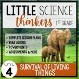 Little 1st Grade SCIENCE Thinkers {UNIT 4: Survival of Liv