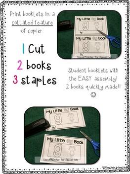 **Little Letter Books-- Interactive Alphabet Books