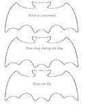 Little Bat Book
