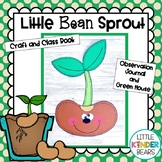 Little Bean Sprout Craft and Green House