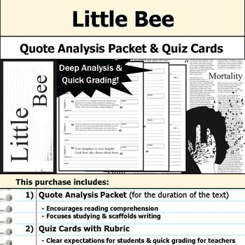 Little Bee (The Other Hand) - Quote Analysis & Reading Quizzes