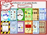Little Books Early Childhood Special Education  Kindergart