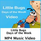 Little Bugs Music Video MP4